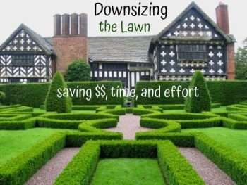 tips to downsize the lawn