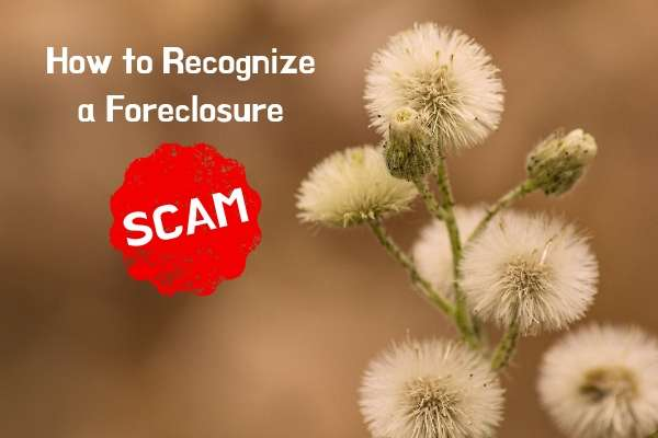 how to recognize a foreclosure scam