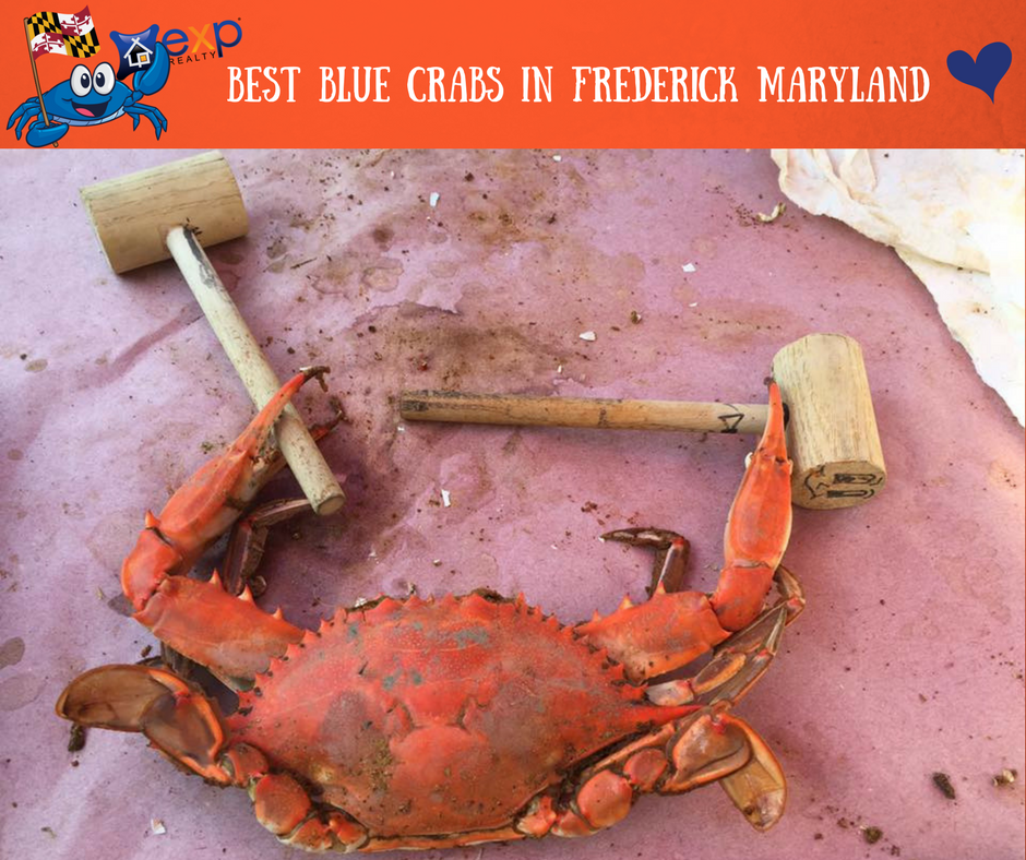 Best Crabs in Frederick County Md