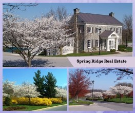 Spring Ridge Neighborhood Real Estate Report