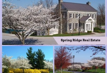 Homes for Sale in Spring Ridge Frederick Md