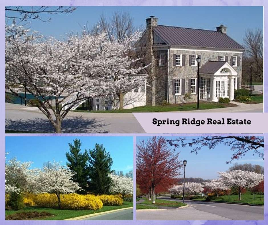 Spring Ridge Community real estate
