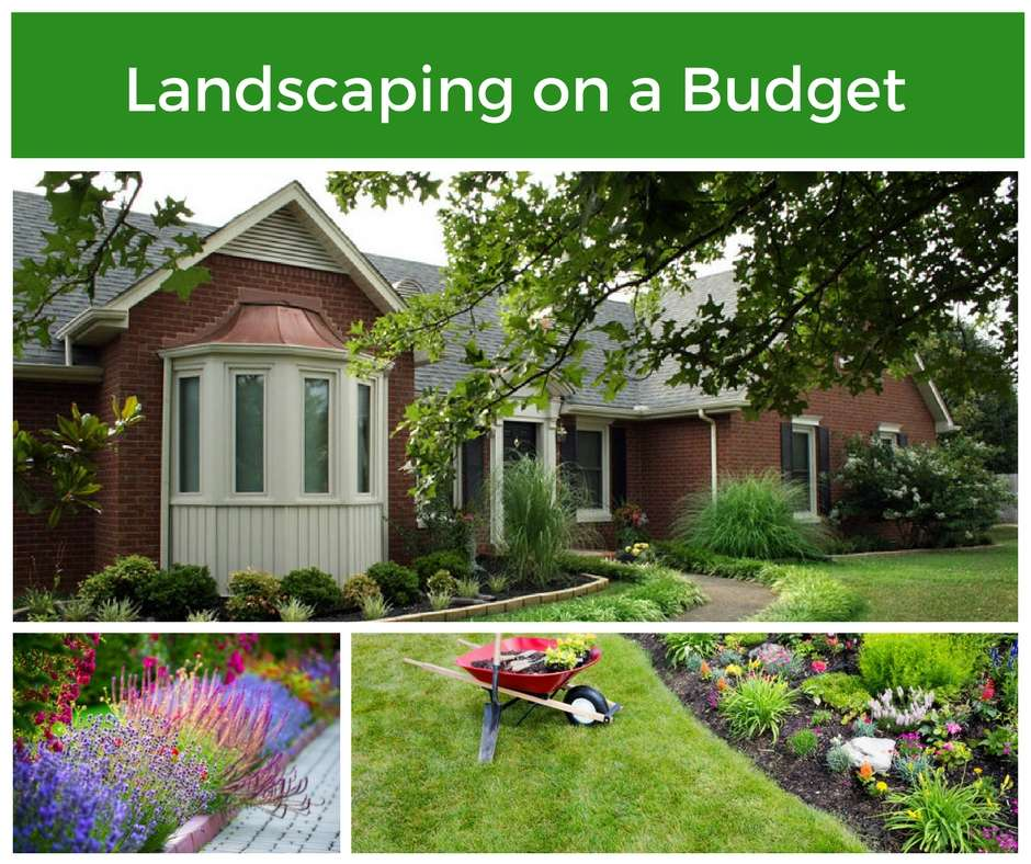 Landscaping your frederick home on a budget for Landscaping on a budget