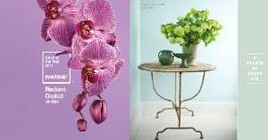 decorating color of the year