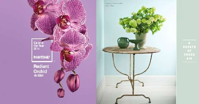 Using Fresh Flowers to Stage Your Home for Sale