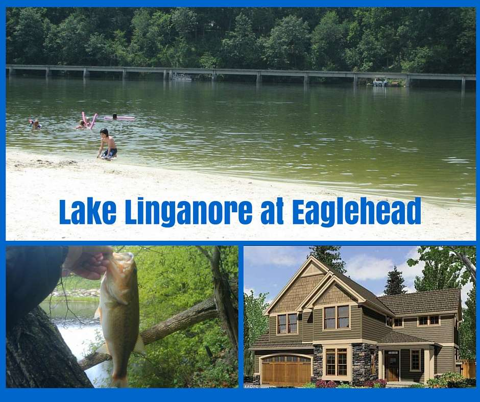 Lake linganore homes