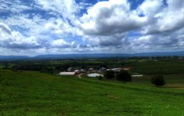 Farms and Farmettes for Sale in Frederick County MD