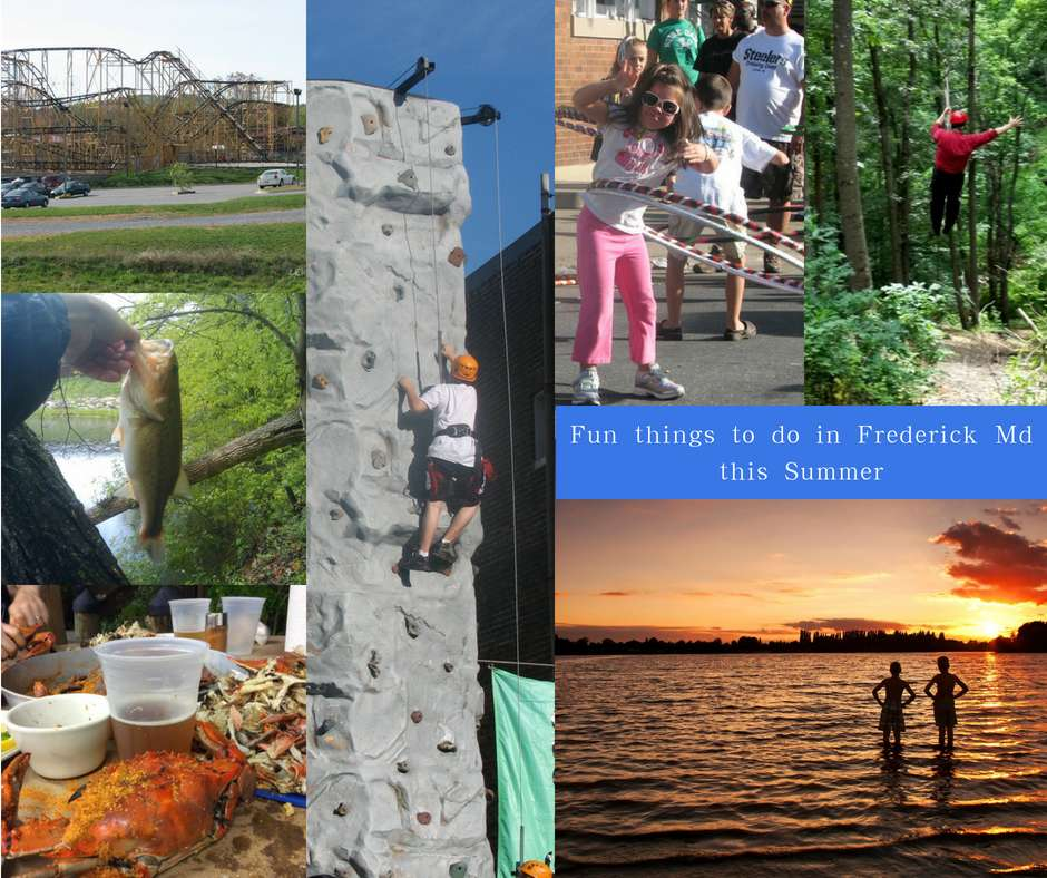 fun things to do frederick md summer